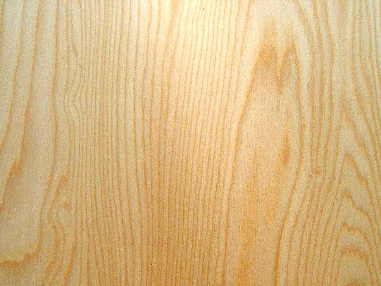 Bouleau bois le bouvet - Deco avec bois de bouleau ...